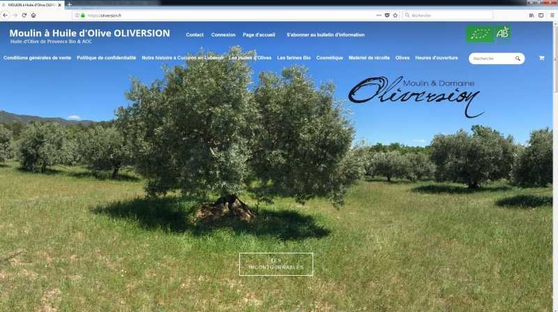 Page-daccueil-domaine-oliversion-optimiser-son-site