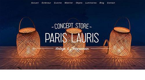 Création de site inertnet Paris lauris concept store par nnw agence web pertuis