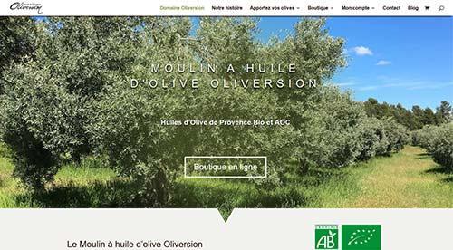 créarion site internet par nnw domaine oliversion